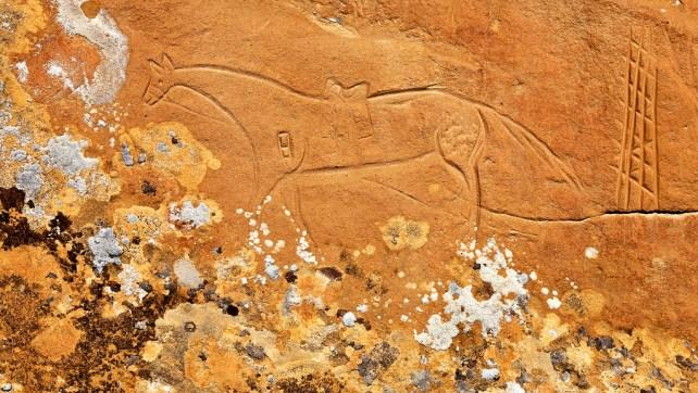 White River Area Rock Art