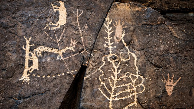 Shavano Valley Petroglyph Park