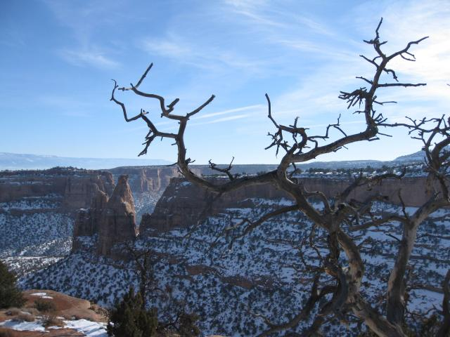 Canyon Rim & Window Rock