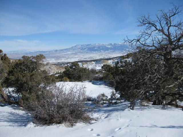 Snowshoeing Bangs Canyon