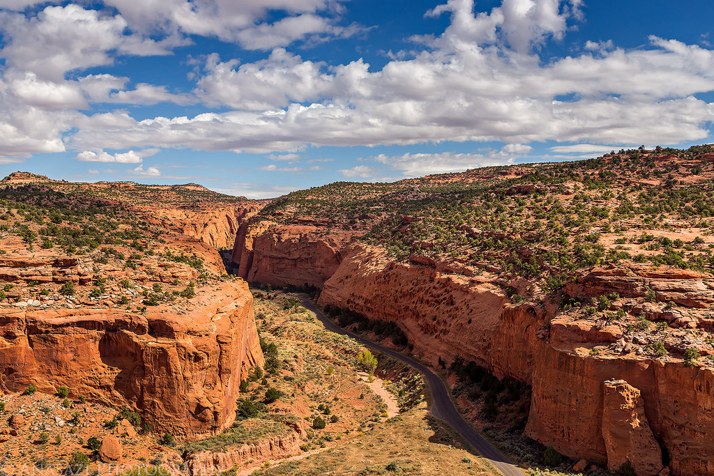 Red Canyon & Wolverine Canyon