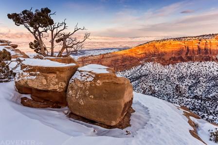 Canyon Rim Winter