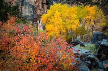 No ThoroughFALL Canyon