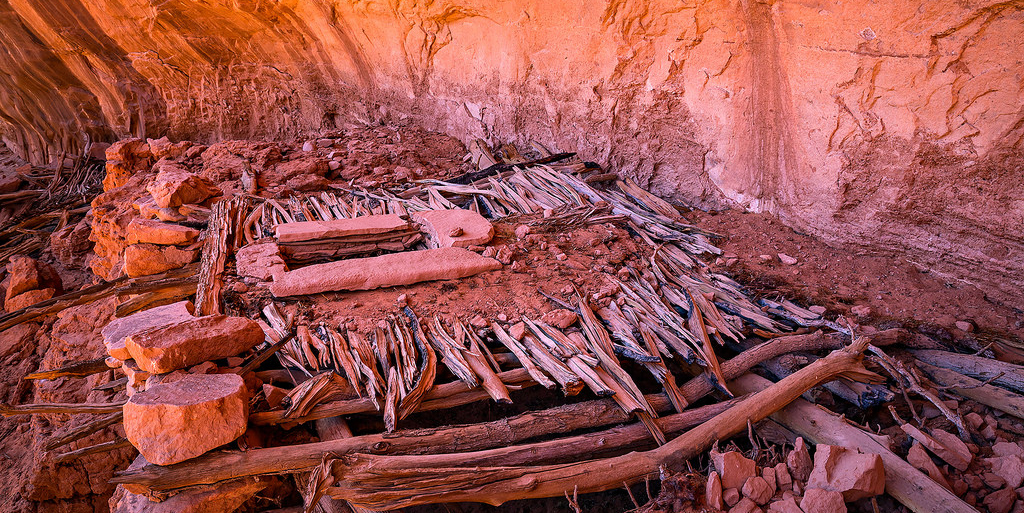 Bears Ears Lost