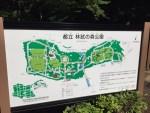 都内で気軽にトレイルを楽しめるランスポット01 林試の森公園(武蔵小山)