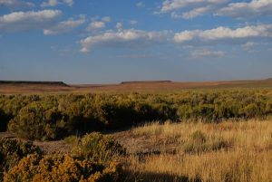 A Safari Across Nevada's Remote Sheldon National Wildlife Refuge