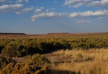 Sheldon National Wildlife Refuge is known for its pristine sagebrush-steppe ecosystem.View of the range looking south from Catnip Reservoir.