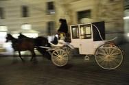 Vienna by night