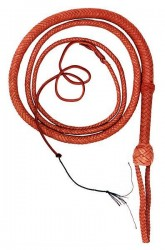 Entangling Whip
