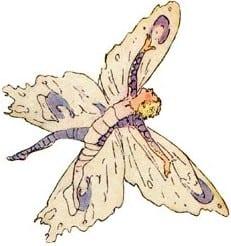 butterfly-fairies-5
