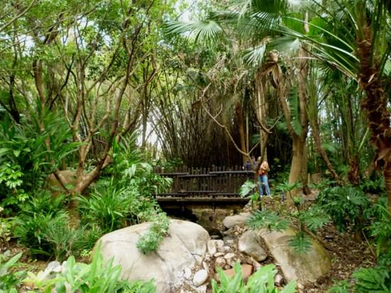 Harry-P.-Leu-Gardens1