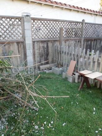 blank canvas- garden fence-final