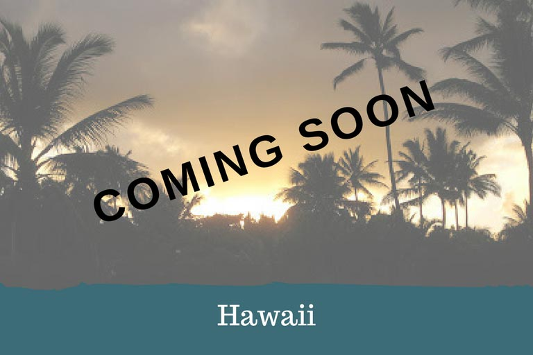 Hawaii Adventure - Coming Soon