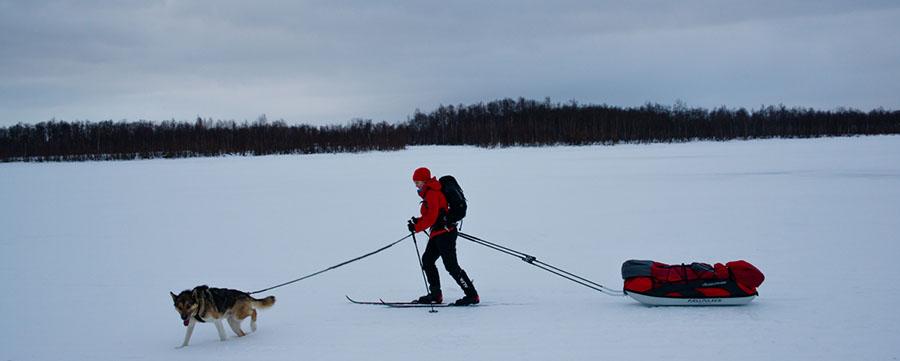 Lucy Shepherd cross-country skiing with an alaskan husky