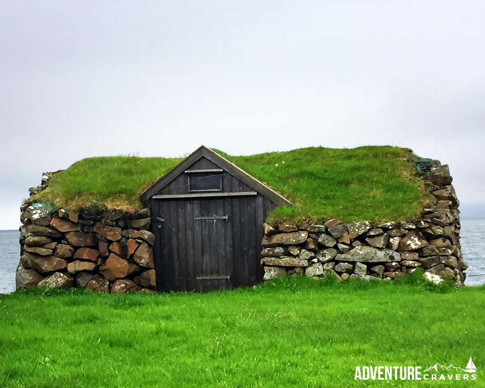 Grass Roof on a sheep hut in Nolsoy on the Faroe Islands