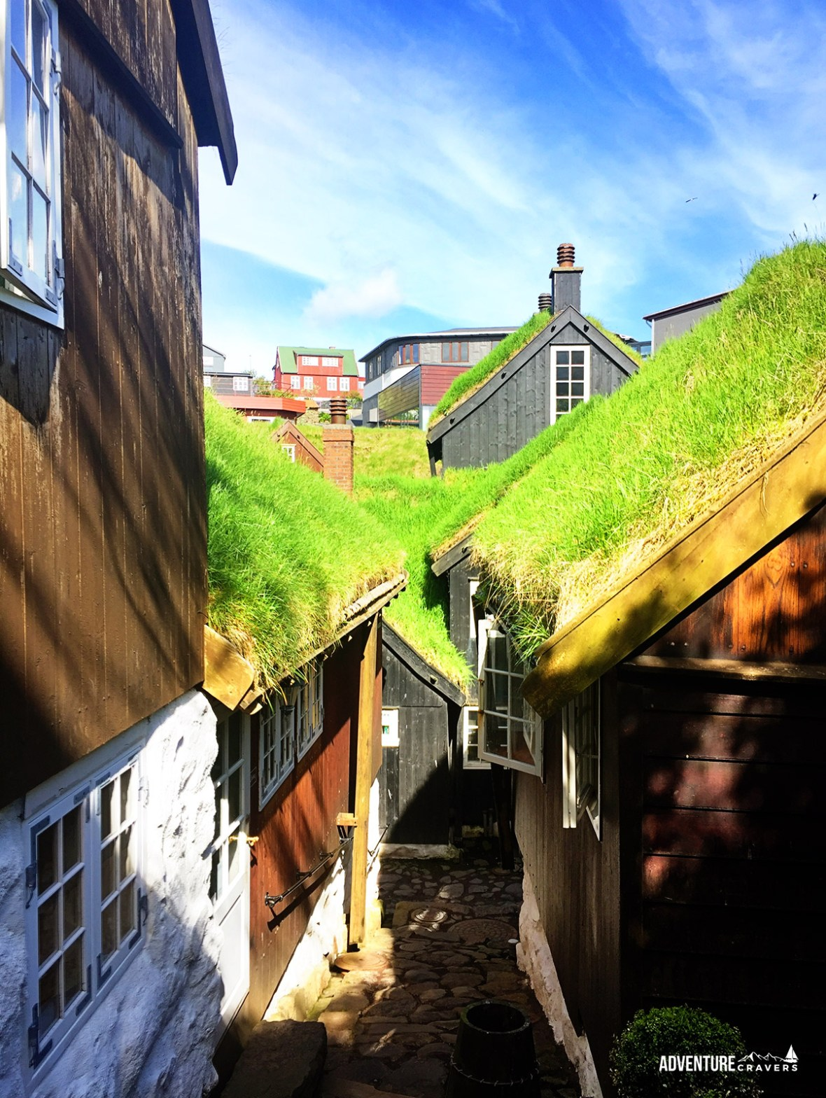 Grass roofs in the town or Torshavn, Faroe Islands