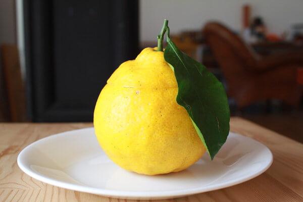 三宝柑の写真