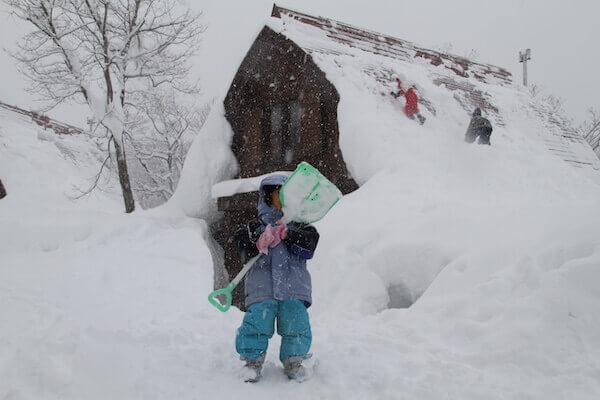 森の家で豪雪体験の写真