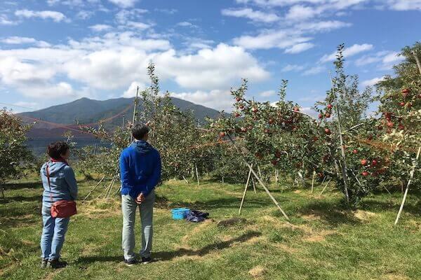 大松農園の全景写真
