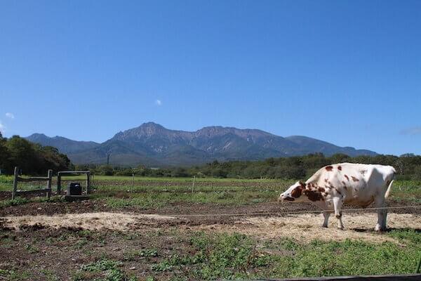 滝沢牧場の写真