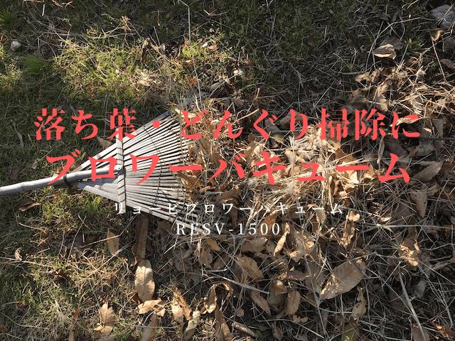 落ち葉掃除のアイキャッチ画像