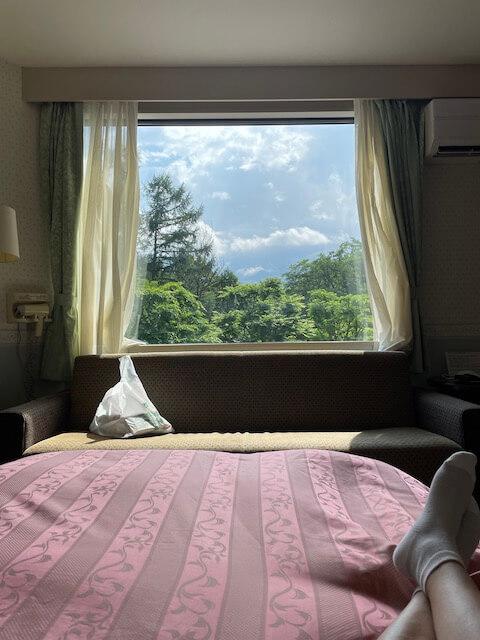 ホテル白馬の部屋からの眺めの写真