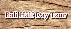 Bali Half Day Tour