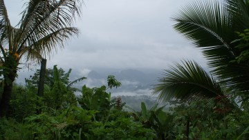 Costa Rican country side.