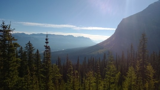 Looking down the Bow Valley.