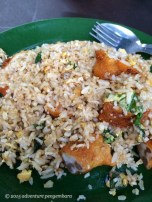 Fried rice, nasi durang, from our favorite hawker stall. This is chicken, but they also offer mutton and fish.