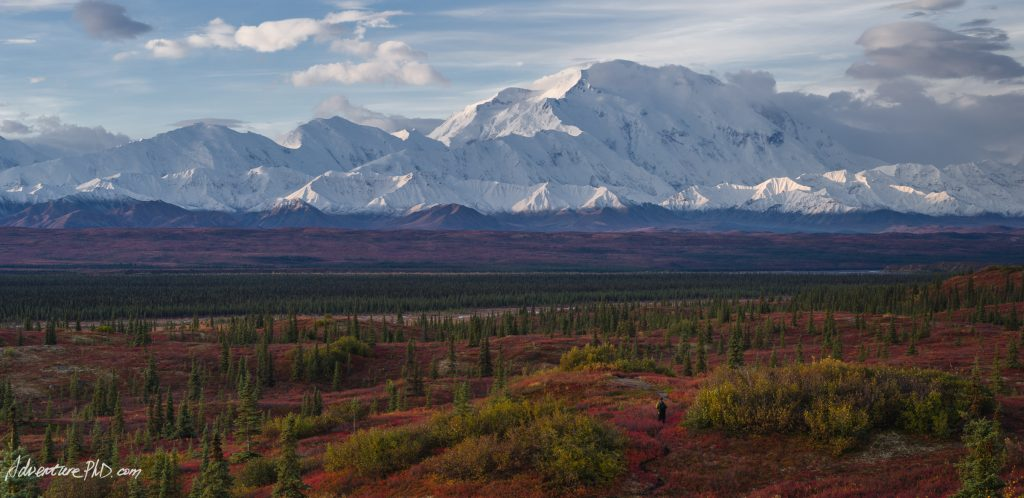 Hike into the Denali tundra wilderness