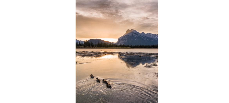 morning family time , Vermilion Lakes, Banff