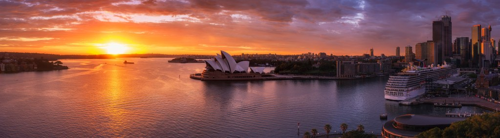 Sydney morning glory
