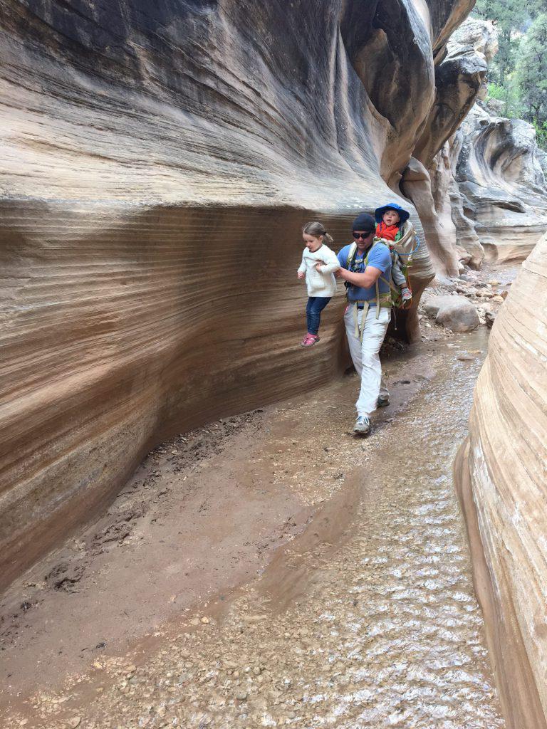 Hiking Willis Creek