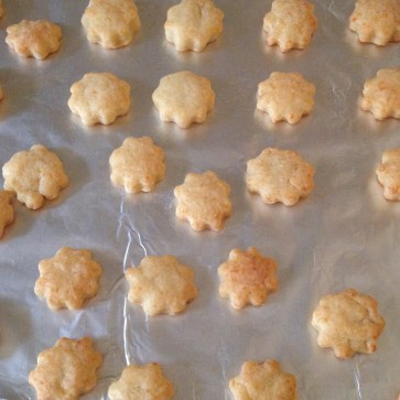 Homemade White Cheez-Its | Adventures in Polishland