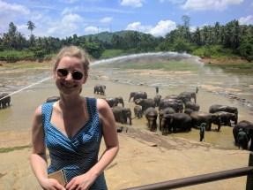 Olifanten spotten in Pinnawala Elephant Orphanage