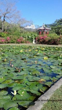 Harmonious Enjoyment Garden, St. Andrew