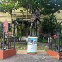 Bob Marley Museum, Saint Andrew
