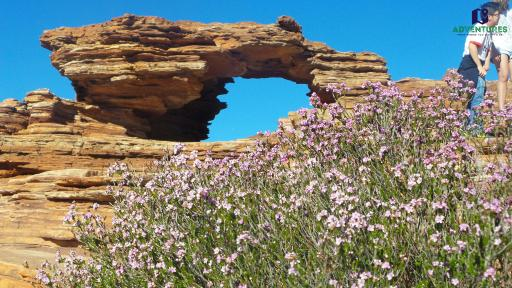 Kalbarri Natures window
