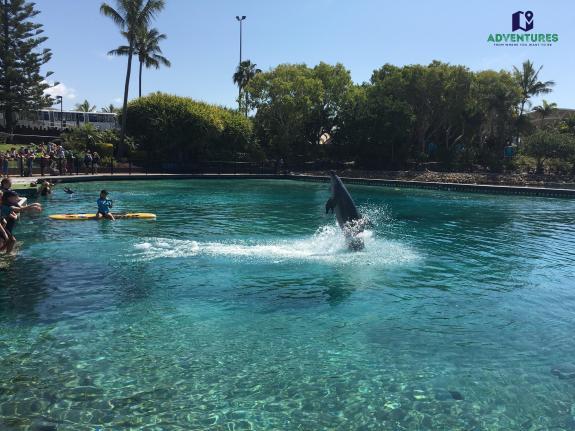 Dolphin Aqua Adventure