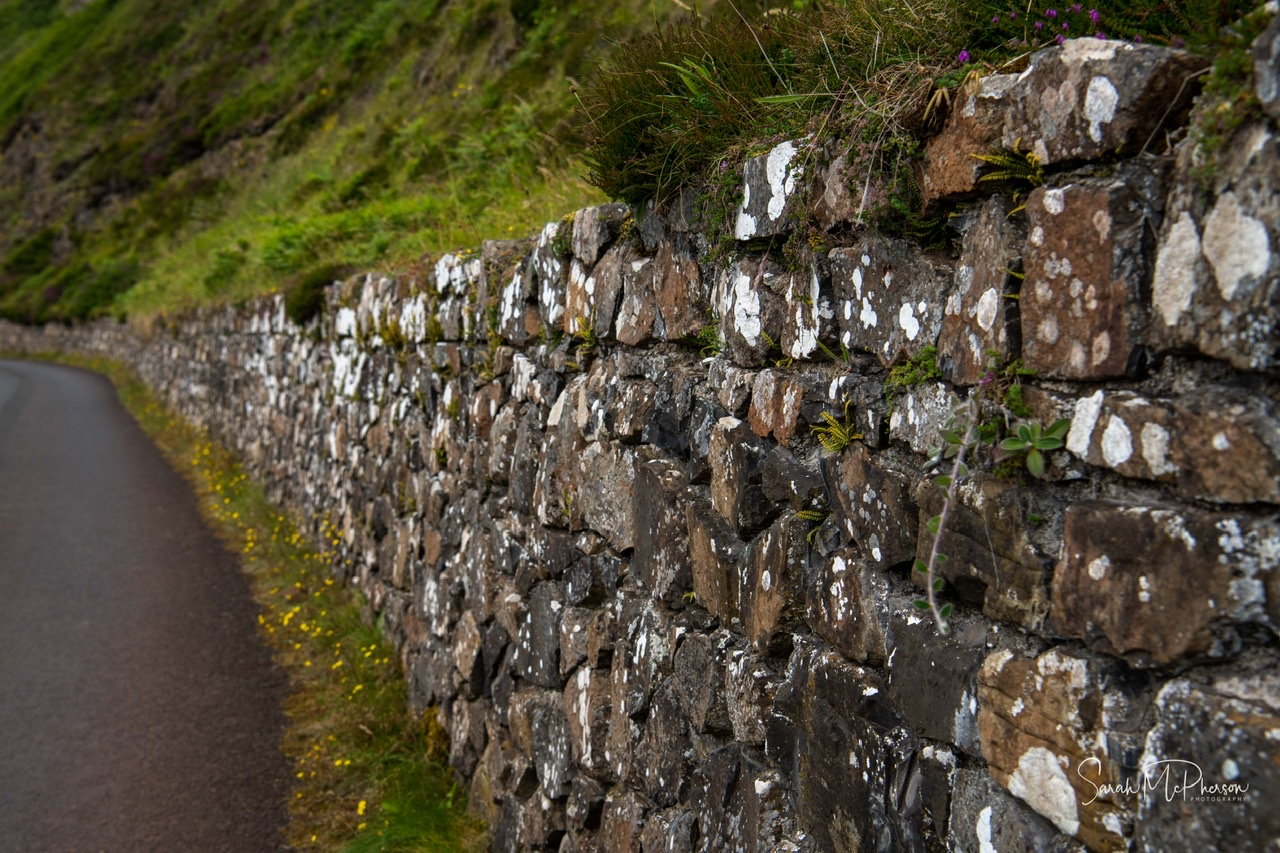 Giant Causeway - Northern Ireland