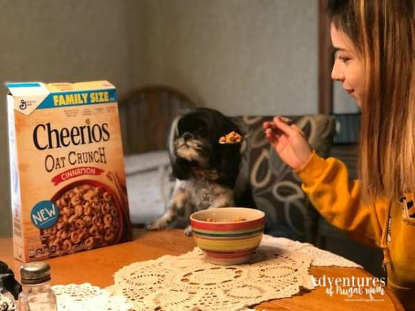 Nobody Does It, Like Cheerios from North Carolina Lifestyle Blogger Adventures of Frugal Mom