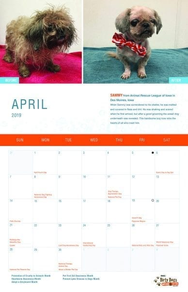 New Calendar Raises Money For Animal Rescues from North Carolina Lifestyle blogger Adventures of Frugal Mom