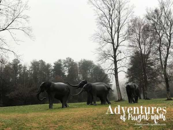 Hanging out at the North Carolina Zoo from North Carolina Lifestyle Blogger Adventures of Frugal Mom