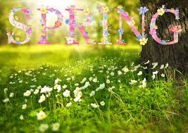First Day of Spring 2021: The Spring Equinox | Spring equinox, Spring  wallpaper, Spring pictures