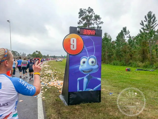 Mile Marker 9 of 2014 Walt Disney World Half Marathon Flik