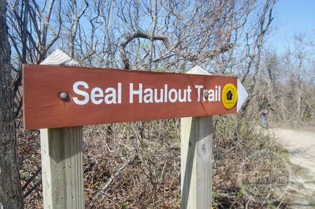 Montauk Point State Park Seal Haulout Trail Sign