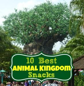 10 best Animal Kingsom Snacks