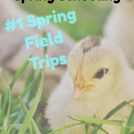 5 Days of Spring Schooling – #1 Spring Field Trips