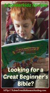Looking for a Great Beginner Bible – A Zonderkidz Review